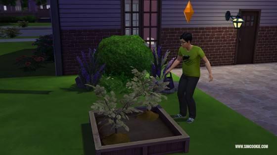 les-sims-4-jardinage