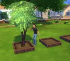 Гайд по весенним испытаниям в The Sims 4