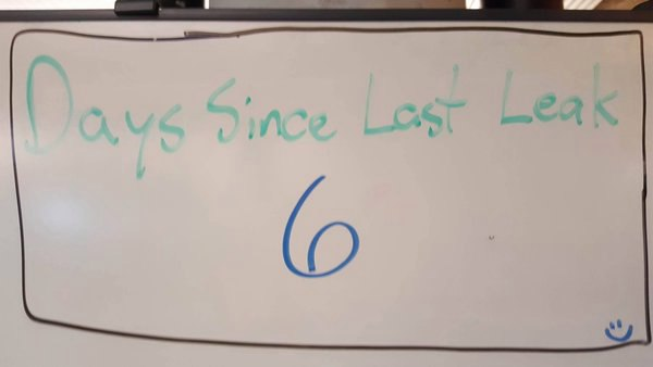дней спустя последней утечки новостей the sims 4