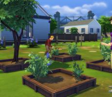 The Sims 4: 12 вещей которые вы должны попробовать во время недели тройного усиления