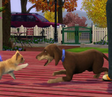 Аниматор The Sims 4 работает с «четвероногими»