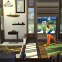 Факты о каталоге «The Sims 4: Фитнес»
