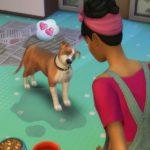 Жизненные цели и черты характера симов из «The Sims 4: Кошки и собаки»