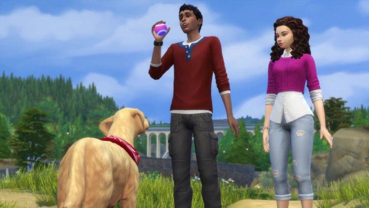 игра в мяч с собакой симс 4