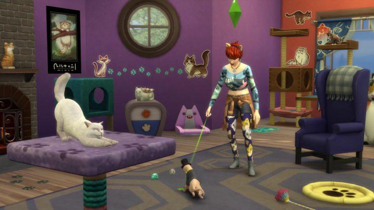 объекты для кошек