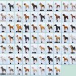 Список всех пород из дополнения «The Sims 4: Кошки и собаки»