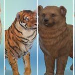 12 животных, воссозданных в «The Sims 4: Кошки и собаки»