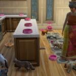 Как добавить в семью больше 8 симов/питомцев