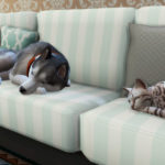 Обзор дополнения «The Sims 4: Кошки и собаки»