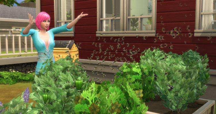 пчелы опыляют растения