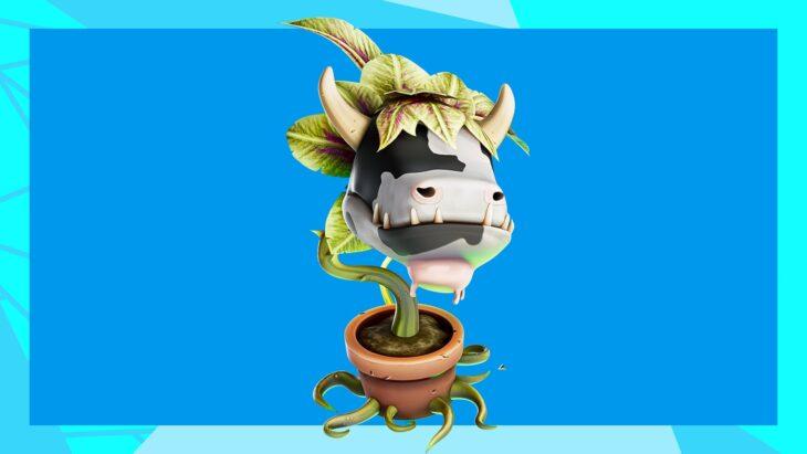 жвачное растение